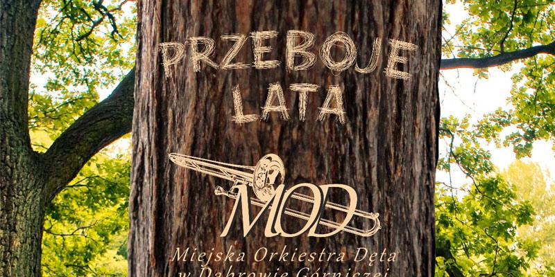przeboje-lata-park-zielona-promo