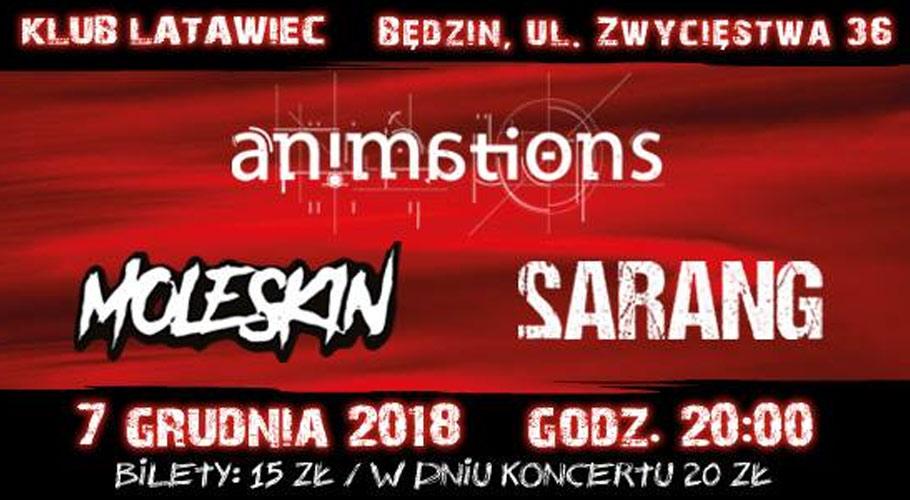 animations-latawiec-bedzin-koncert