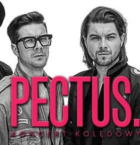 koncert-pectus-muza-sosnowiec-min