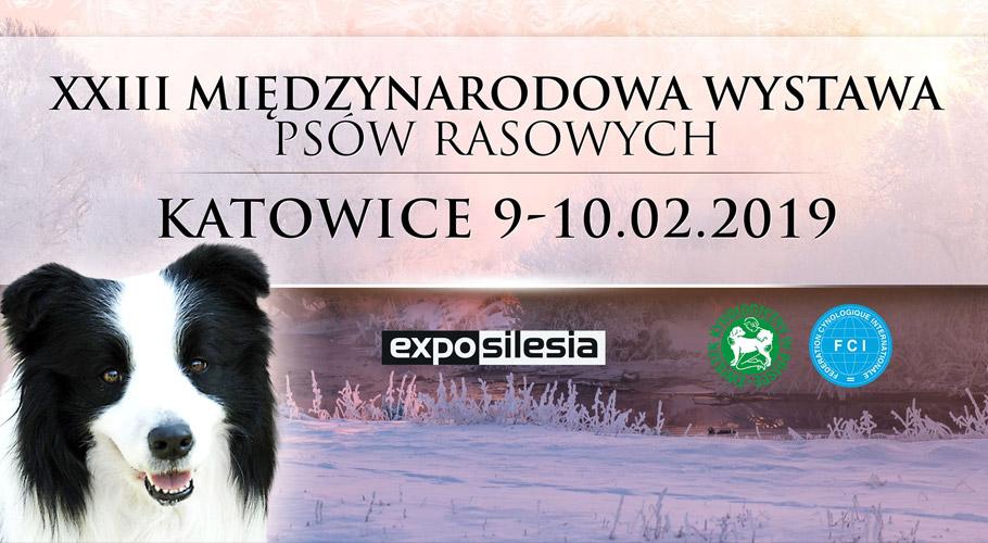 wystawa-psow-rasowych-expo-silesia-sosnowiec