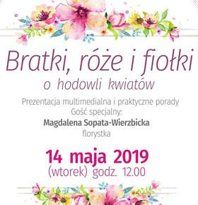 magdalena-sopata-florystka-mbp-sosnowiec