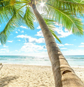 czwartkowe-latino-beach-bar-pogoria-min