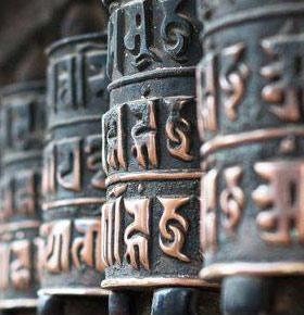 spotkanie-z-lama-buddyjskim-arenda-lochy-zamkowe-bedzin-min