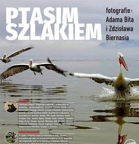 wystawa-ptasim-szlakiem-zaglebiowska-mediateka-sosnowiec-min